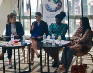 Professor Inga Winkler Speaks at UN Event on Menstrual Health